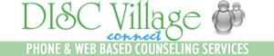 Disc Village's Company logo