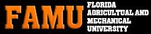 Discover Famu's Company logo