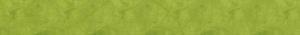 Discover Natures Oils's Company logo