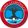 Divers Underground's Company logo