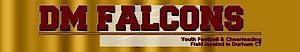 Dmfalcons's Company logo