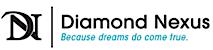 DN's Company logo
