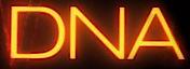 DNA Films's Company logo