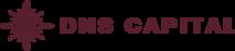 DNS Capital's Company logo