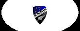 Dodgeball New Zealand's Company logo