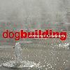 Dogbuilding's Company logo