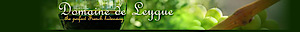 Domaine De Leygue's Company logo