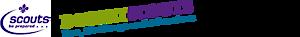 Dorset Scouts's Company logo