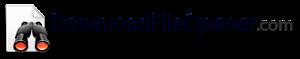 Downloadfileopener.com., A Web Property Of Ms Technology's Company logo