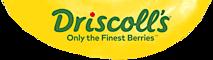Driscoll's's Company logo