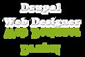 Drupal Web Designers's Company logo