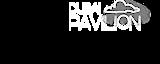 Dubai Pavilion's Company logo