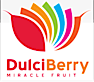 Dulciberry's Company logo