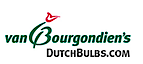 DutchBulbs's Company logo
