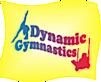 Dynamicgymnasticsny's Company logo
