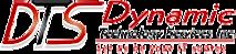 Dtservicesinc's Company logo