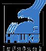 E Hawks Infotech's Company logo