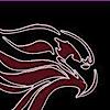 Eagle Gymnastics's Company logo
