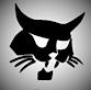 East Texas Bobcat Service's Company logo