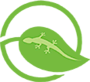 Eco-gecko Products's Company logo
