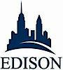 Theedison's Company logo
