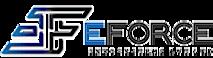 EForce InfoSystems's Company logo