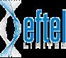Eftelgroup, Net's Company logo
