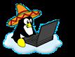 El Pinguino Designs's Company logo