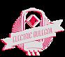Electric Bulegoa's Company logo