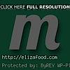 Eliza Food's Company logo