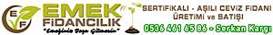 Ceviz Fidani's Company logo