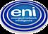 Emergent Network Intelligence