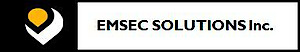 ESI's Company logo