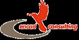 Encad Consulting's Company logo
