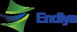 Endiya Partners's Company logo
