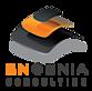 Engenia Consulting Sprl's Company logo