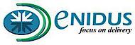Enidus's Company logo