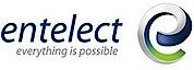 Entelect's Company logo