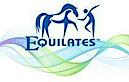 Equilates's Company logo