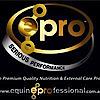 Equine Professional's Company logo