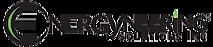 Energyneering Solutions's Company logo