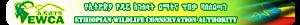 Ethiopian Wildlife Conservation Authority's Company logo