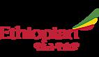 Ethiopian's Company logo