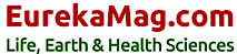 EurekaMag's Company logo
