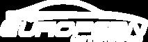 European Motorwerks's Company logo