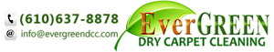 Evergreen Dry Carpet Cleaning's Company logo