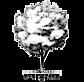 Evergreen Videografi's Company logo