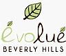 Evolue's Company logo