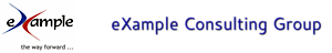 Example Consulting Group's Company logo