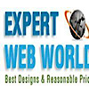 Expert Web World - Website Design, Seo,  Domain Registration, Web Hosting's Company logo